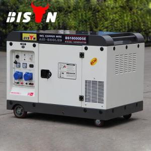 バイソン11kw 12kwの長期間の時間Air-Cooled最大ディーゼル発電機
