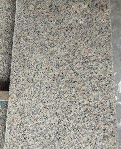 Het Rode Graniet van China van Wholesales, de Natuurlijke Rode Goedgekeurde Tegel van de Huid van de Tijger van Stenen met ISO9001