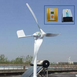 800W 600 W de potencia nominal del generador de molino de viento de 24V 12V con el controlador y un inversor
