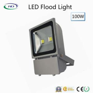 100W Holofote LED da série clássica para luz de Jardim