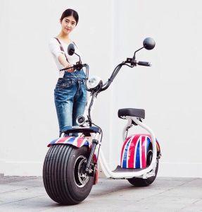 Motorino elettrico del EEC Citycoco di alta qualità della Cina, bici elettrica della gomma grassa 1000W