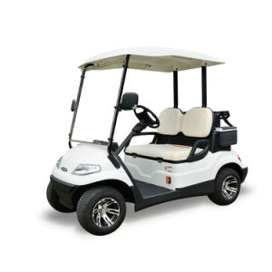 セリウムは承認した2 Seatersの電気ゴルフカート(LT-A627.2)を