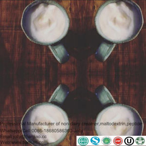 Molkereijoghurt-Puder für den Mongolian