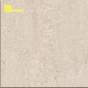 Flooringのための想像Double Loading Series Granite Tiles