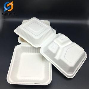 10 3 Compartiment de la bagasse de canne à sucre Food Box