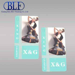 Бумажный мешок с цветной печати (BLF-T012)