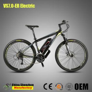 Barato 24 discos de freno de la velocidad de 250W de aleación de montaña Bicicleta eléctrica