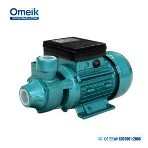 La BID de la série 1 Nettoyer la pompe à eau électrique HP