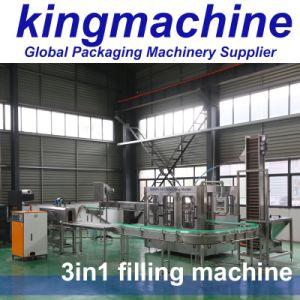 Fabricant de l'eau en bouteille en plastique en acier inoxydable de machine de remplissage