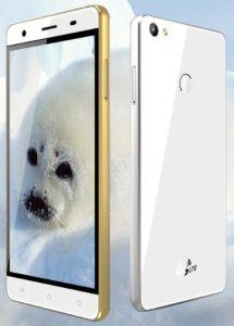 5.0'' 1900mAh 4G Smart Phone Model Bw9