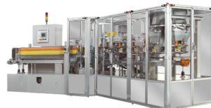 Llenado de la caja de embalaje, sellado de la máquina para el Detergente en Polvo\Café\Macarrones (ZH100-A)