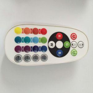 Design elegante de tubos coloridos de LED com controle remoto