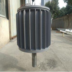 20квт генератора постоянного магнита 220 В/360 В переменного тока с двумя вала
