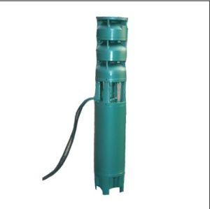 Versenkbare elektrische Pumpen (Reihen 200QJ)