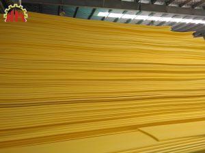 Mousse EPE pavé mousse/Plank/Board extrusion de la ligne de production