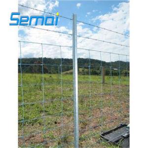 熱いすくい電流を通されたフィールド塀の/Animalの塀か牛塀