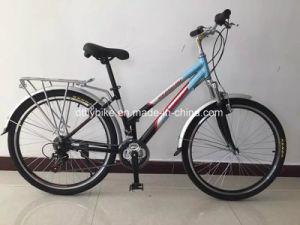 Lady Vélo VTT de châssis, châssis en acier Lady Mountain Bicycle,
