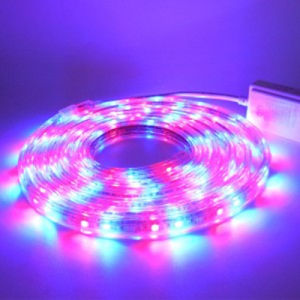 Chriatmas impermeabilizza la striscia di 14.4W/m SMD5050 RGB LED