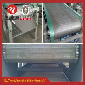 Correia de malha de três camadas contínuo de marisco equipamento de secagem do secador
