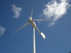 10квт горизонтального ветряной мельницы генератора