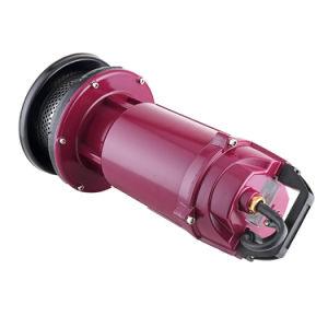 Uso Interno Qdx bomba eléctrica de água limpa AC Motor bomba submersível