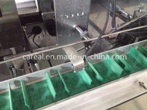 El tubo de llenado automático de alta velocidad de la máquina Jdz Cartoning 100