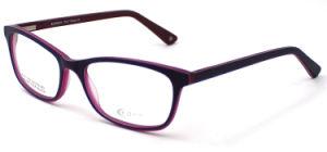 Glazen van het Oog van het Frame van Eyewear van de Tendens van de Markt van Europa de Optische (FXA1231)