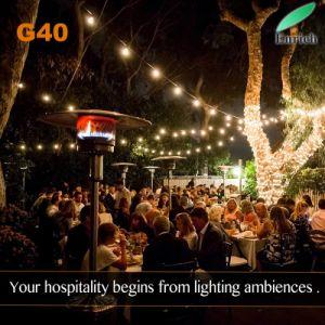 AC110V/AC220V Chaîne de LED de plein air de la lumière avec E17 G40 de base de LED Lampe à incandescence