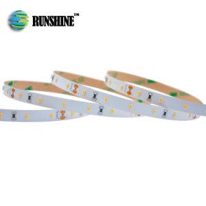 Corda de LED profissional em Luz (3528 2835 3014 5050 2216 5630 5730)
