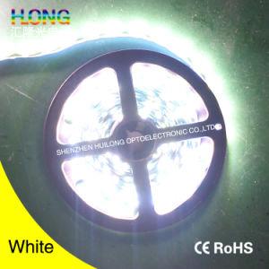 Striscia molle di SMD 2835 LED con il prezzo competitivo