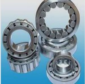 Roulements à rouleaux cylindriques (être-002)