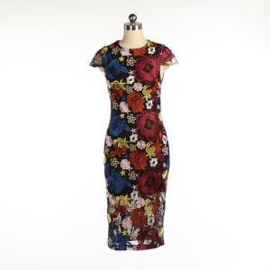 Короткое замыкание втулку красочные Embrodiery Красота Мода платье для леди