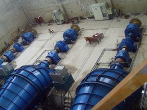 Turbina tubolare capa bassa, turbina tubolare delle pale registrabili