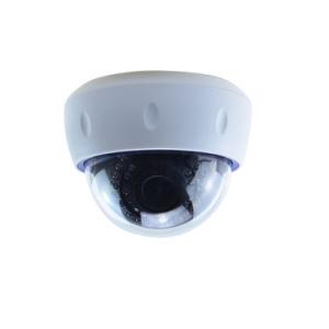 1개의 Megapixel 돔 CCTV Megapixel 감시 돔 사진기