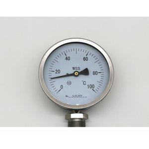 60/100/150 millimetri di termometro bimetallico con esattezza 1.5%