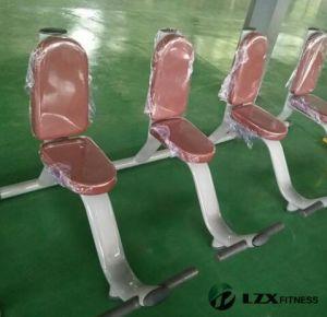 중국 공급자 직업적인 체조 장비 실용적인 벤치 적당 장비