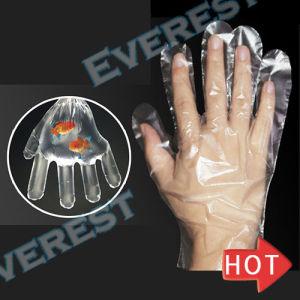 台所プラスチック使い捨て可能な手袋