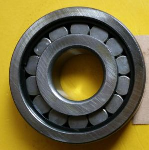 Stahlpeilung ISO-Certificated/NSK/Timken/SelbstBearingncl409V