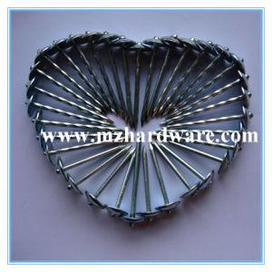 De hoge Spijkers van het Dakwerk van de Paraplu Quolity Hoofd met Prijs 2.5 van de Fabriek  *10bwg