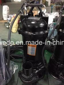 Schmutzige elektrische Pumpe des Wasser-Wqd15-32-4 mit Niveauschalter