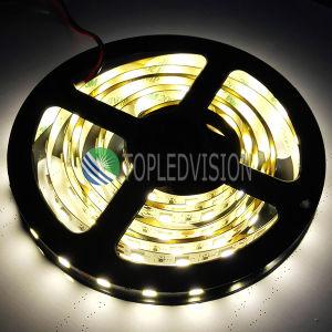 5054 Luz de tira del LED 60LEDs / M Se utiliza en iluminación decorativa