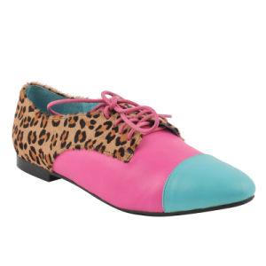 Nuevo estilo plano casuales zapatos de mujer (HCY02-1524)