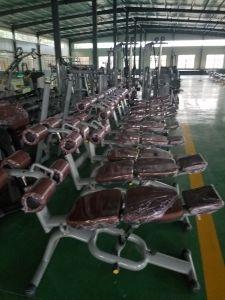 Fabbrica addominale registrabile dello Shandong Ningjin di forma fisica di Lzx del banco