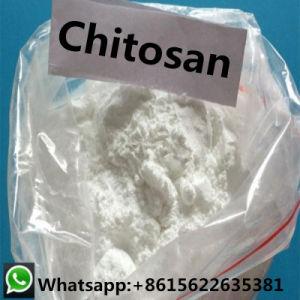 Chinesische Fabrik gibt Chitosan-Puder 9012-76-4 für Lebensmittelindustrie an