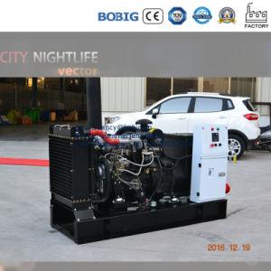 유형 Lijia 발전기 20kw를 여십시오