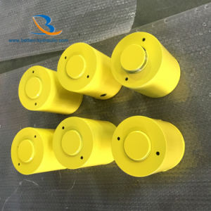 中国の機械のためのカスタマイズされた小型水圧シリンダ