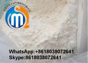 La pérdida de grasa natural suplemento CAS 541-15-1 L-carnitina