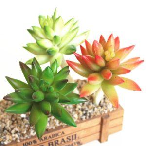 Семьи подарок искусственные цветы Искусственные растения Succulents для украшения стола