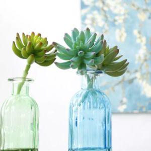Pianta succulente artificiale della decorazione del PVC di falsificazione di plastica esterna dell'interno del Faux