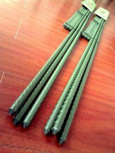 プラスチック上塗を施してある庭の鋼鉄棒